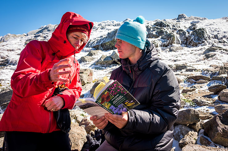 Colby-Sawyer student and professor discuss alpine flora during Alpine Communities field studies class