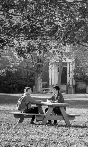 Students sitting at picnic table