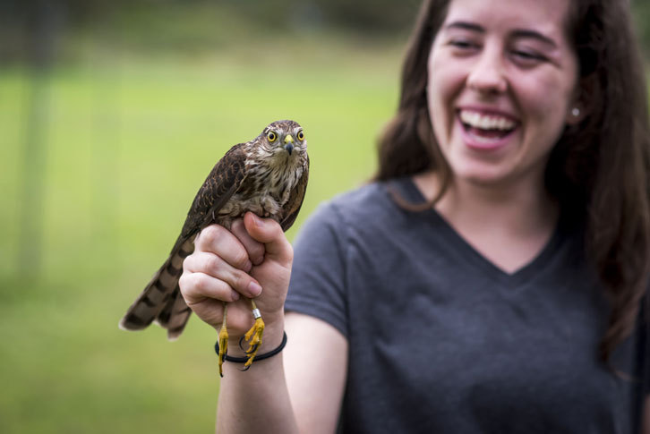 A female student holds a hawk.